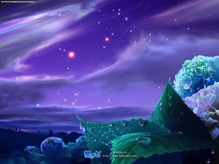 mjv-art-org_-_103197-1024x768-kagaya-sky-cloud28clouds29-star28stars29-night-plant28plants291.jpg