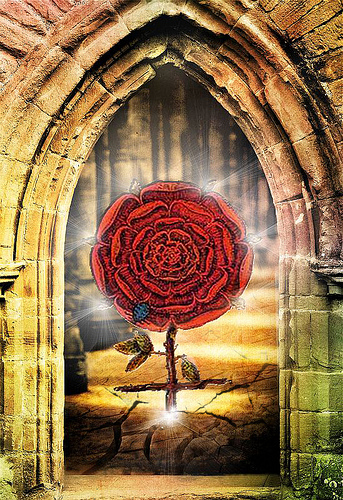 roza gotica
