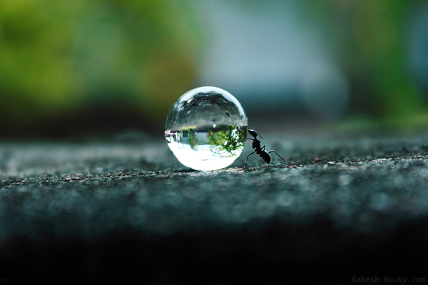 water-drop-photos-40